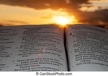 日光, 4:2., 云霧, 背景, 神圣, malachi, 聖經, 打開, 傍晚, 重要部份