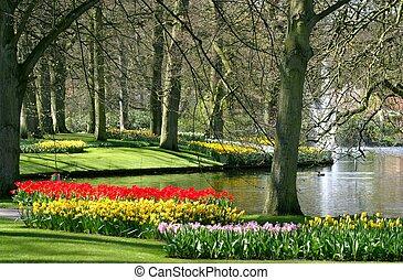 春天, 公園, 時間
