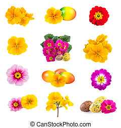 春天, 復活節, 彙整, 花