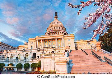 春天, 晚上, 陽光普照, 州議會大廈, 我們