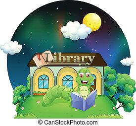 書, 閱讀, 虫, 圖書館, 前面