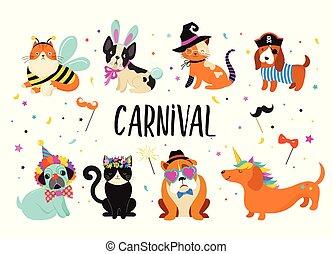 有趣, 狂歡節, 鮮艷, 漂亮, 服裝, 動物, 插圖, 狗, 矢量, 貓, pets.