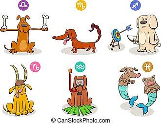 有趣, 集合, 星象, 簽署, 黃道帶, 狗
