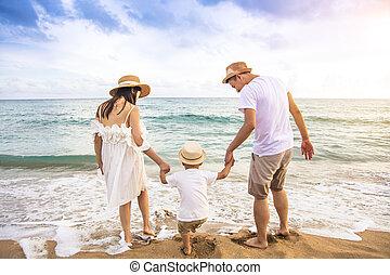 有, 家庭, 愉快, 玩, 海灘, 樂趣