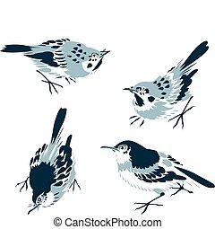 東方, 鳥, 插圖, 第一流