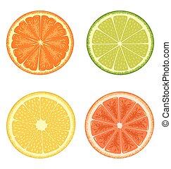 柑橘屬, 白色, 集合, 被隔离
