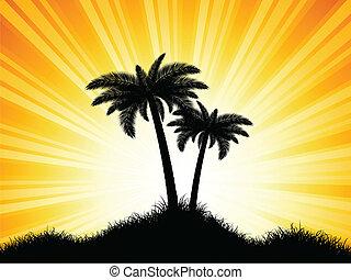 棕櫚, 黑色半面畫像, 樹