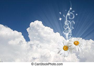 植物, 天空, 背景