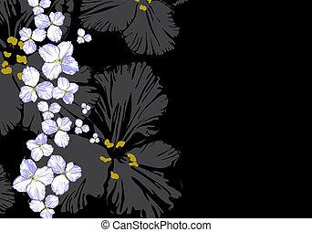 植物, 插圖
