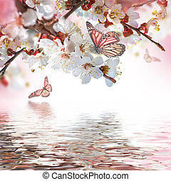 植物, 杏, 花, 背景, 春天