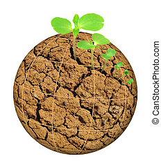 植物, 概念, 行星, 演化, 被隔离, 烘, 生長, 不透明