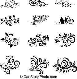 植物, 矢量, 設計元素, calligraphic