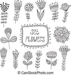 植物, elements., flowers., 葡萄酒, 手, 畫