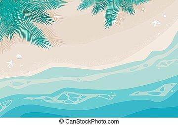 椰子殼, 季節, starfish., 夏天, 海灘, 背景, 樹