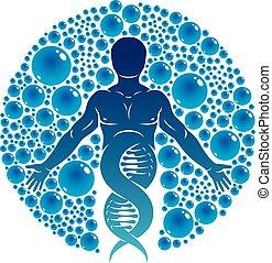 模型, 圖表, dna, 科學, 自然, eco, 圍繞, 男性, 插圖, 建立, 水, 矢量, 人類, interaction., 強有力, 技術, 友好, ball., 技術