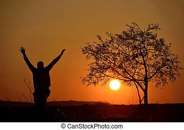 樹, 黑色半面畫像, 傍晚, 背景, 人