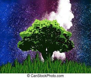 樹, sta, 背景, 一