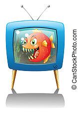 橙, 大, 電視, 比拉魚, 給予