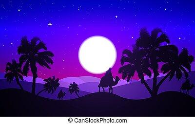 沙漠地形, 夜晚