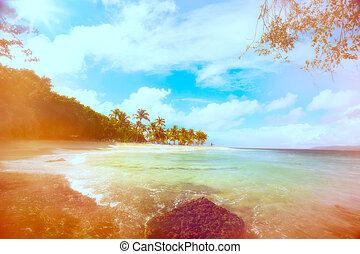 海灘假期, 藝術, 夏天, 海洋