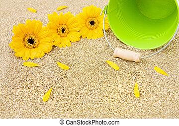 海灘, 夏天, 假期