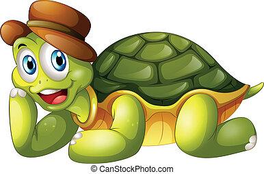 海龜, 下來, 微笑, 躺