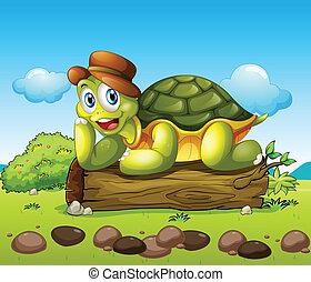 海龜, 微笑, 上面, 樹干