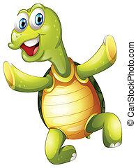 海龜, 微笑