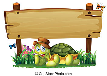 海龜, 木制, 下面, 板, 微笑, 空
