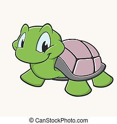 海龜, 漂亮
