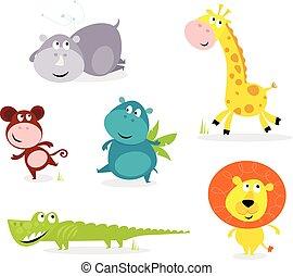 漂亮, 動物, 六, -, 旅行隊, 長頸鹿