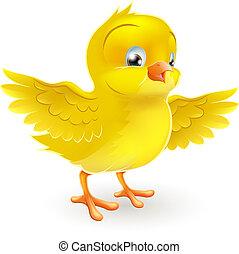 漂亮, 很少, 愉快, 黃色的chick