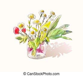 漂亮, 很少, 花束, wildflowers., 陽光普照, 略述, 水彩, 矢量, poppies., 雛菊