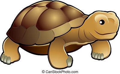 漂亮, 烏龜, 插圖, 矢量