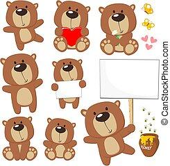 漂亮, 熊, teddy
