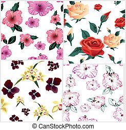 漂亮, pattern., seamless, 四, 矢量, 植物