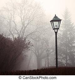 燈, 霧, 公園, 街道, 森林