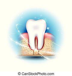 牙齒的健康, 關心