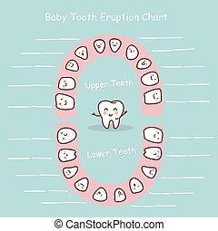 牙齒, 記錄, 圖表, 嬰孩
