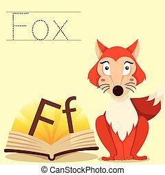 狐狸, 說明者, 詞彙, f