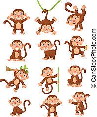 猴子, 愉快, 集合, 彙整, 卡通