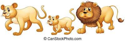 獅子, 一起步行, 家庭