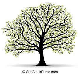 環境保護, 綠色的樹