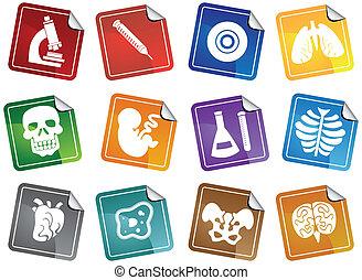 生物學, 圖象, 屠夫, 集合