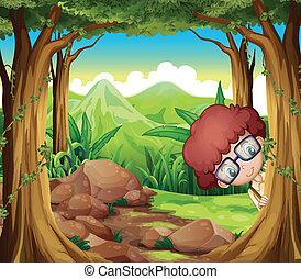 男孩, 森林, 隱藏