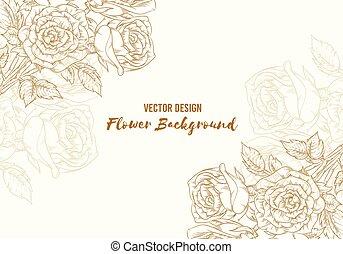 畫, 手, 略述, 背景, 花, 上升, 植物