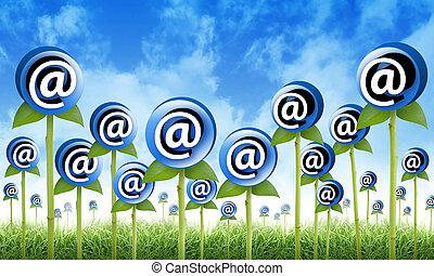 發芽, inbox, 花, 網際網路, 電子郵件