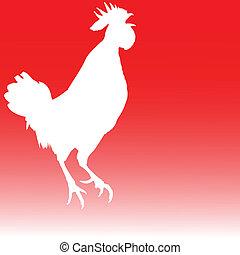 白色, 公雞, 插圖