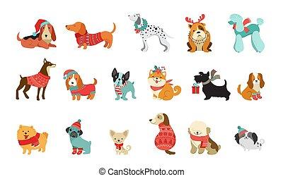 矢量, 圖表, 寵物, 毛線衫, 漂亮, 圍巾, 相象, 聖誕節, 狗, 說明, 附件, 元素, 歡樂, 彙整, 帽子, 編織