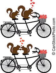 矢量, 松鼠, 自行車